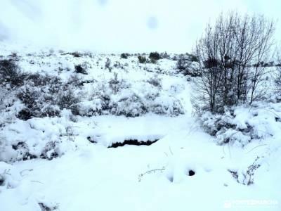 nieve, invierno, cañada; parque picos de europa cercania san sebastian singles con niños madrid